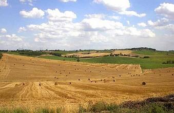 azienda agricola maremma